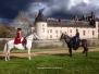 Le château du Plessis Bourré