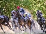 Anjou Loire Challenge