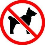 chien-interdit